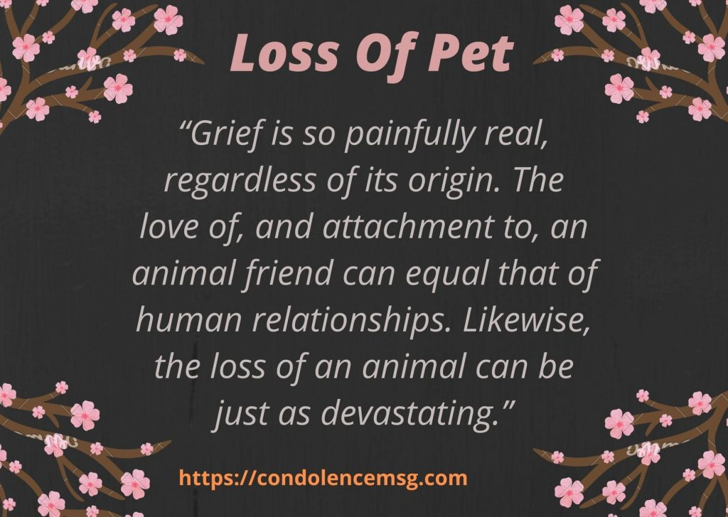 Messages of Condolences for Loss of Pet