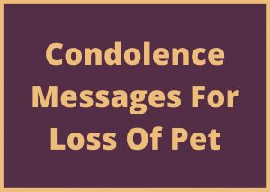 condolence messages for loss of pet