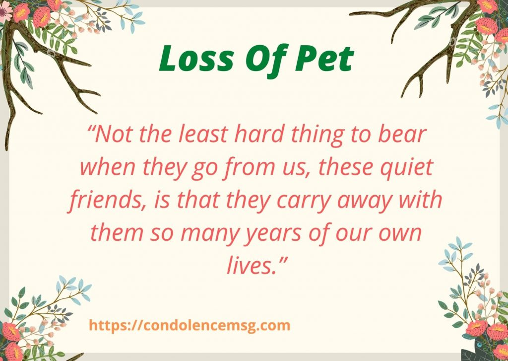 Condolence Messages on Death of Pet